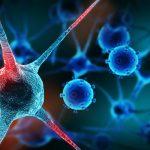 Putem invata sistemul imunitar sa lupte impotriva cancerului?